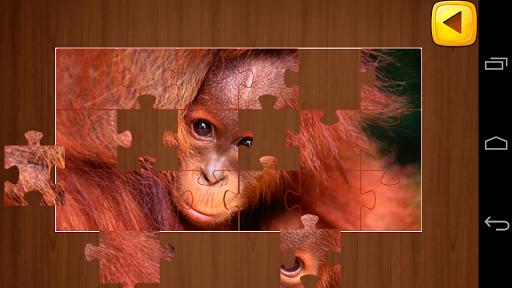 儿童智力拼图游戏
