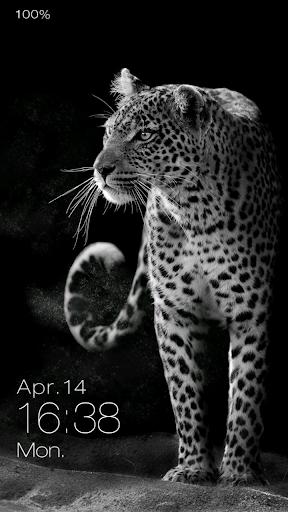 Leopard Live Locker Theme