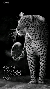 Leopard Live Locker Theme