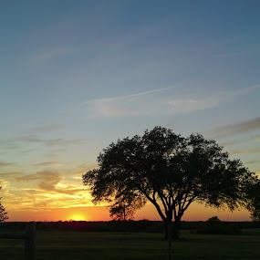 Texas Savannah Sunset by Colin Toone - Instagram & Mobile Other (  )