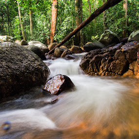 by Stephen Ckk - Nature Up Close Water