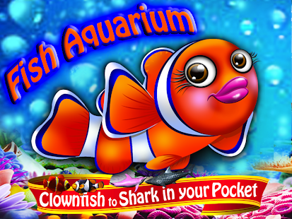 Pocket Aquarium