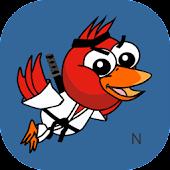 Ninja Duck