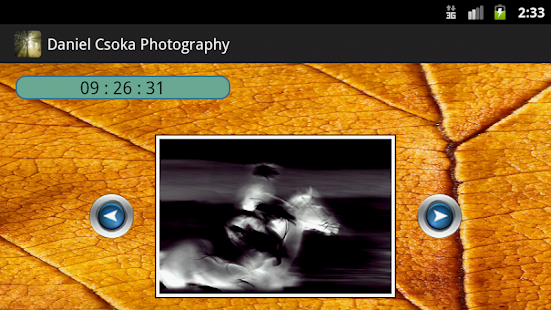 Daniel Csoka Photography- screenshot thumbnail