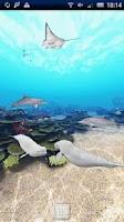 Screenshot of Dolphin Ocean 360°