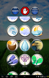 Nature Sounds Ringtones screenshot 4