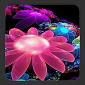 4D Flowers Live Wallpaper
