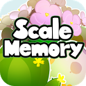Scale Memory icon