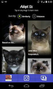 LikeThat Pets: Adopt a Pet - screenshot thumbnail