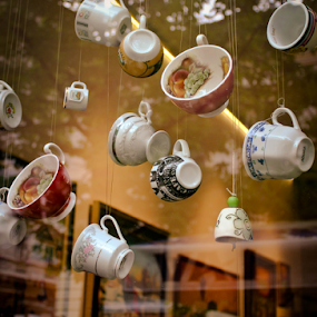 by Tatjana Blesic - Artistic Objects Still Life