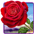 Rose. Magic.. file APK for Gaming PC/PS3/PS4 Smart TV