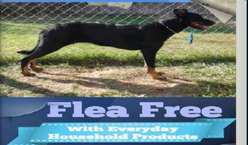 Flea Free