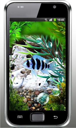 Fishes Tank live wallpaper