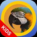 matchBIRDS Kids