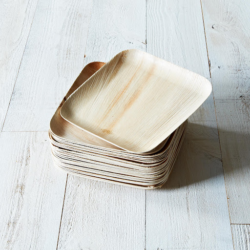Verterra Compostable Dinnerware From Fallen Leaves, Set of 25