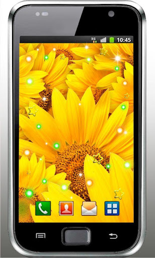 Sunflowers HD live wallpaper