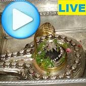 Kashi Vishwanath Live Darshan