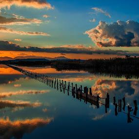 My Magic World by Anna Tatti - Landscapes Sunsets & Sunrises ( sardinia cagliari molentargius stagno natura, , golden hour, sunset, sunrise )