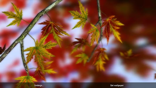 Autumn Leaves in HD Gyro 3D XL v1.0