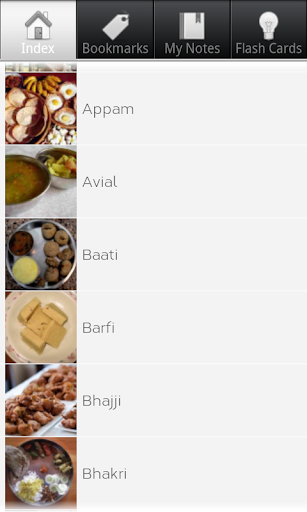 Indian Food Explainer