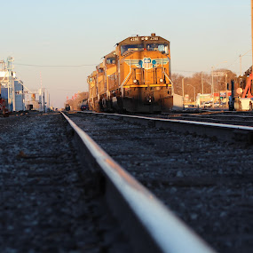 by Stacey Fields - Transportation Trains