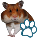 Rodents logo
