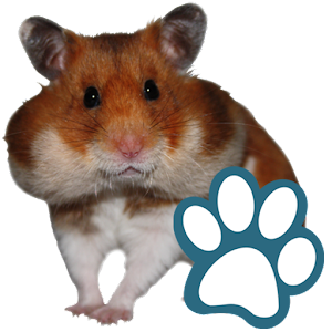 Rodents for PC and MAC