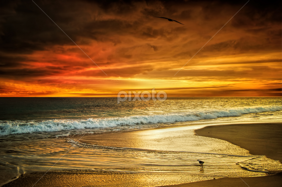 Beach Sunset WA by Loredana  Smith - Landscapes Sunsets & Sunrises ( australian, ocean, beauty, beach, landscape, coastline, romance, escape, coast, nature, idyllic, climate, sand, seashore, sea, leisure, relaxation, seascape, paradise, coastal, color, serene, australia, scene, culture, panoramic )