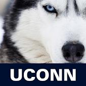 UConn Magazine