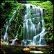 自然風景:滝