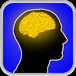 Brain Shaper v2.8