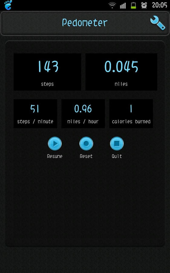 Simple Pedometer - screenshot