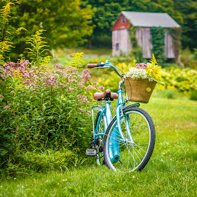 Bicycle and a barn by Olga Gerik - Transportation Bicycles ( barn, summer, flowers, bicycle,  )