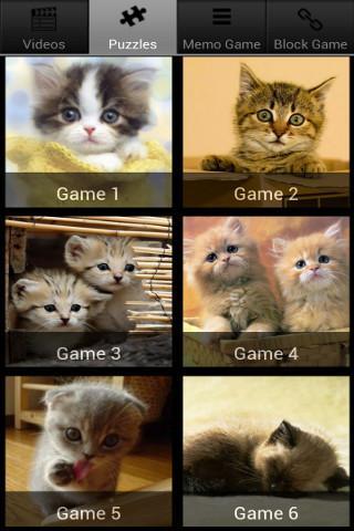 Cute Pet Cats Puzzle Games