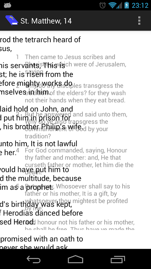 Bible Reader - screenshot