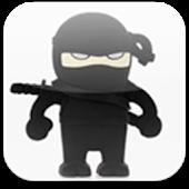 Ragdoll Ninjas