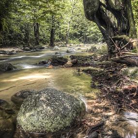 by Zainol Che Omar - Nature Up Close Rock & Stone