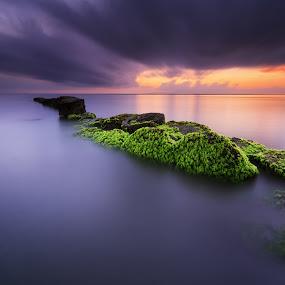 Mossy Rocks by Eggy Sayoga - Landscapes Sunsets & Sunrises ( bali, indonesia, green, sunset, moss, beach )