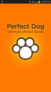 Perfect Dog Free- screenshot thumbnail