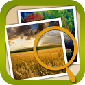 Find 3 Diffs--Landscape icon