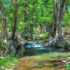 The Creek by Bob Barrett - Landscapes Forests ( stream, reflection, hdr, creek, trees, forest, river )