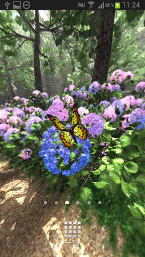 紫陽花の小道360°Trial