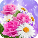 3D Spring Flower icon