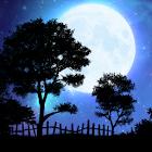 Nightfall Live Wallpaper icon