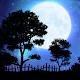 Nightfall Live Wallpaper v2.2