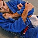 Blue Belt Requirements BJJ icon