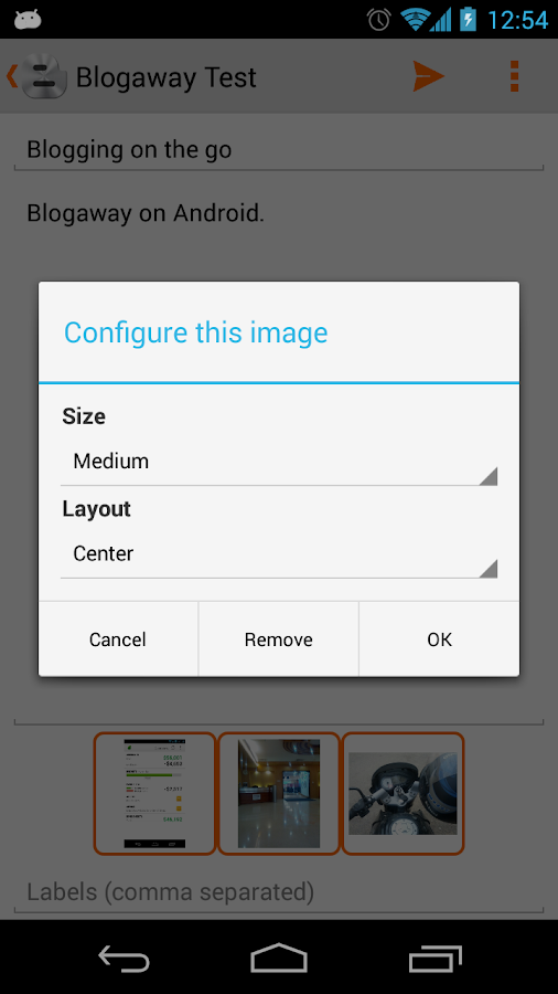 Blogaway for Android (Blogger)- screenshot