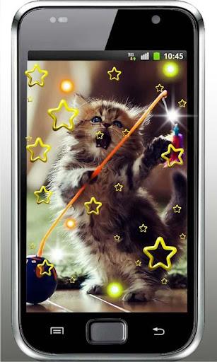 Lovely Kittens live wallpaper