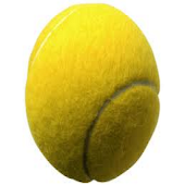 Guess the Tennis Player Quiz