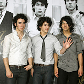 Jonas Brothers Live Wallpaper